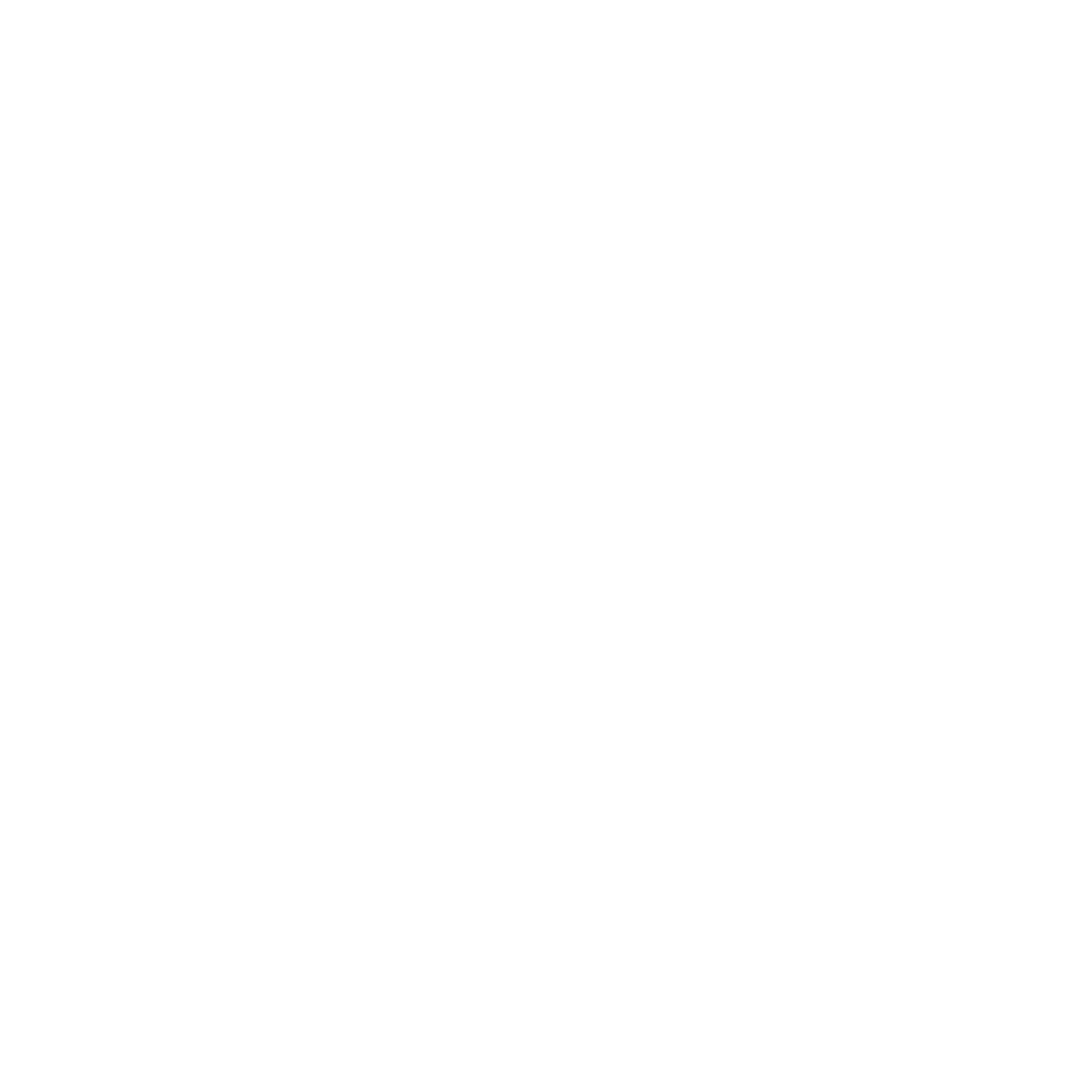 Low cost product range icon